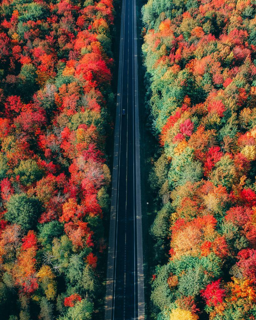fall road trip highway