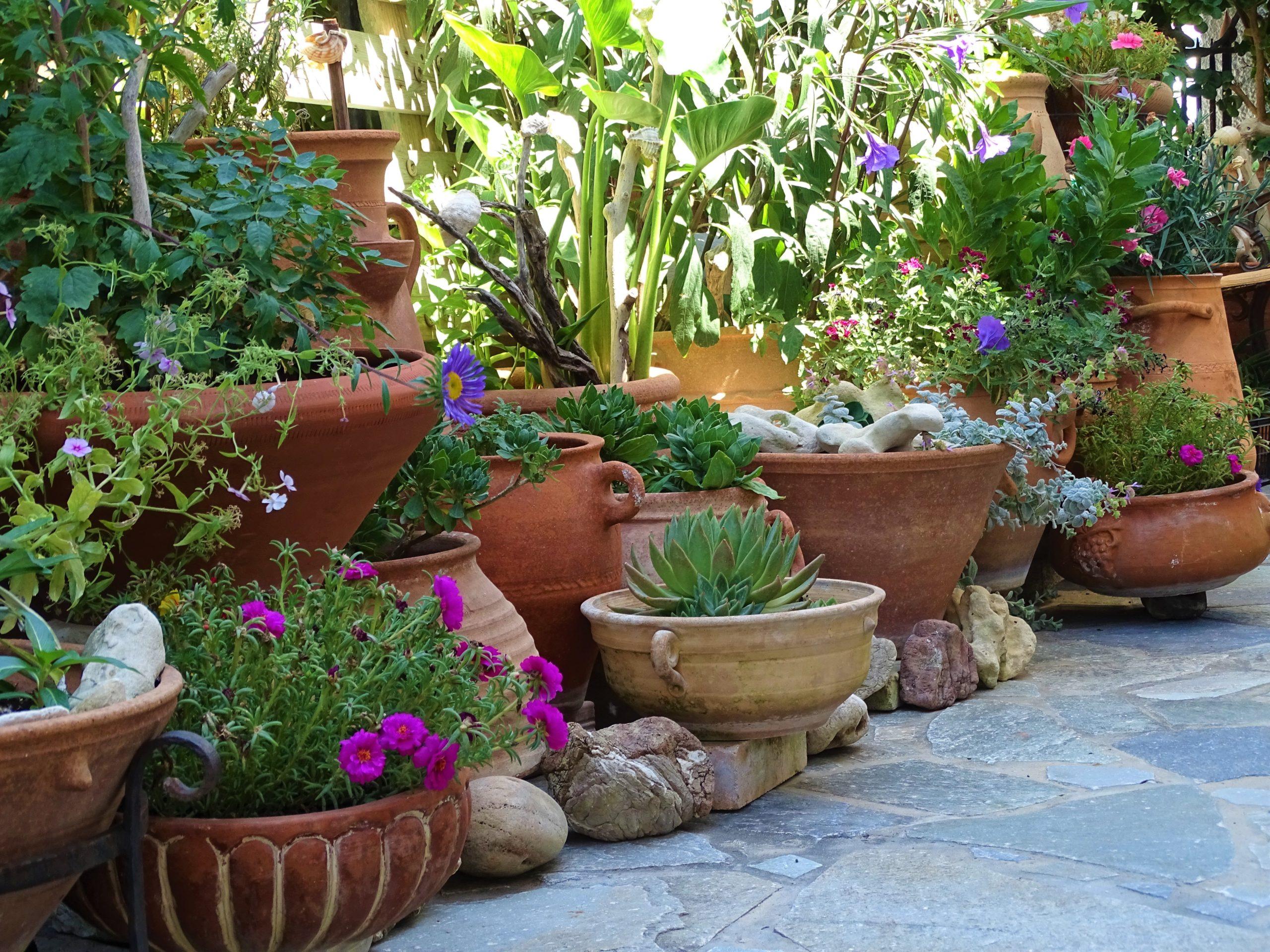 planter size garden ideas